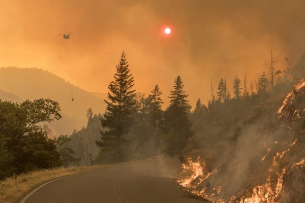 Racial and ethnic minorities are more vulnerable to wildfires